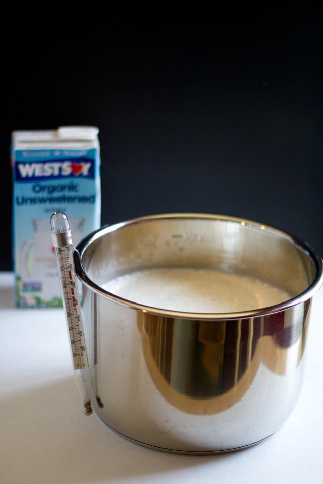 Homemade Non-Dairy Yogurt| http://www.eatwithinyourmeans.com