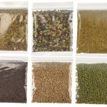 Sample sizes about 4 ounces each of Salad Mix, Alfalfa, Holly's Mix, Mung Beans, Hard Wheat and Broccoli