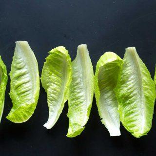 buffalo-chickpea-lettuce-wraps-cups-vegan-gluten-free-1