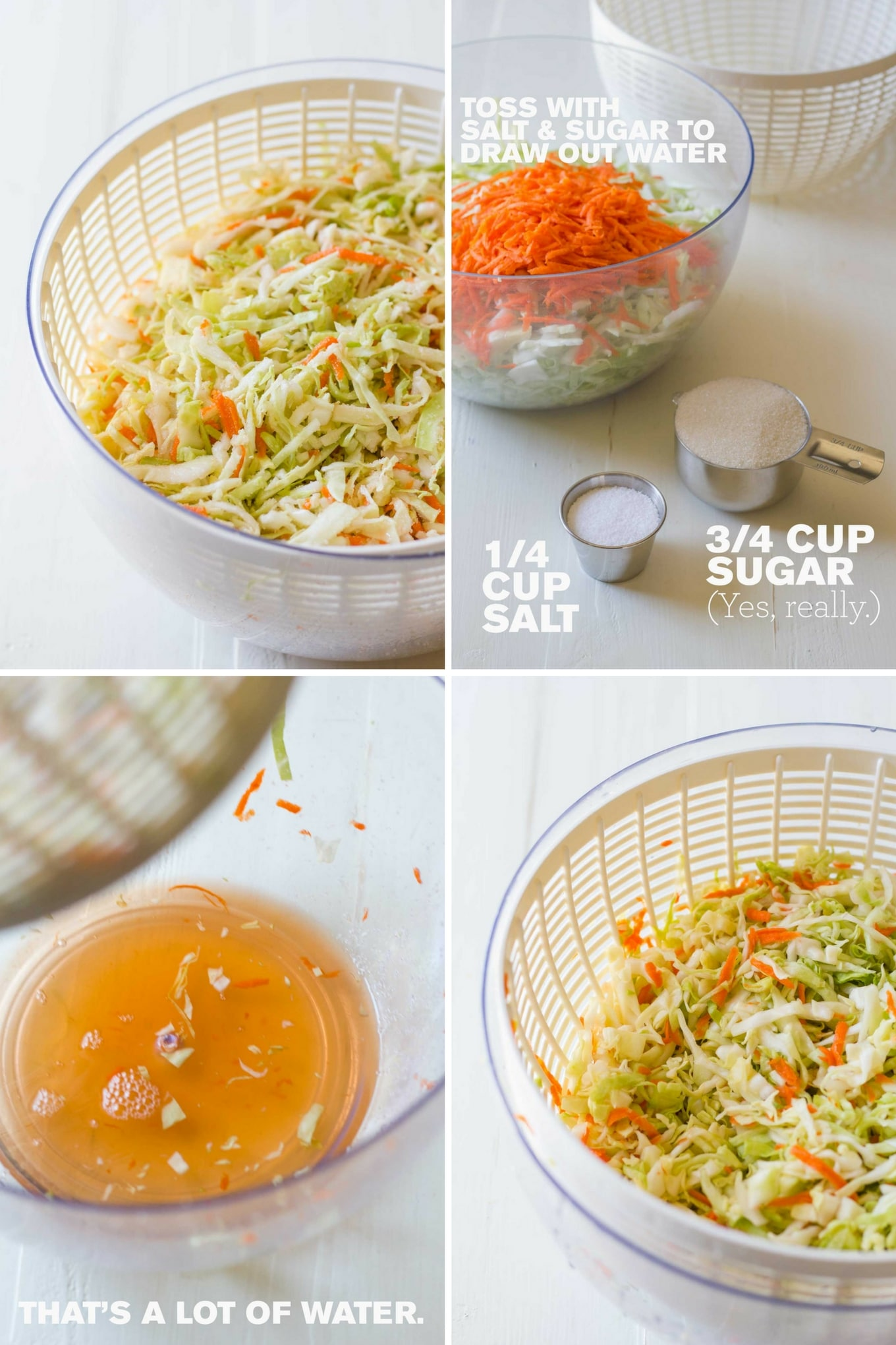 Perfect Vegan Coleslaw | collage of cabbage and carrots tossed with salt and sugar to remove water | Plant-based | Oil-free | https://passtheplants.com/